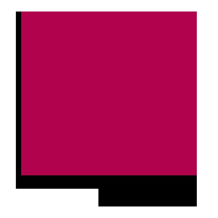 Diseño Web Icono